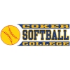 Cover Image for Clearance Decal Sport SOFTBALL DECAL