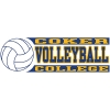 Cover Image for Decal Sport VOLLEYBALL DECAL