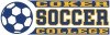 Cover Image for Decal Sport SOCCER DECAL