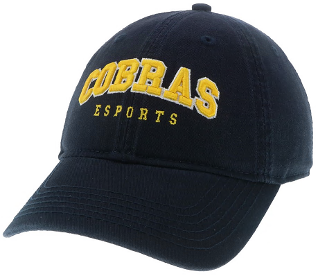 Cover Image For Sport ESPORTS HAT