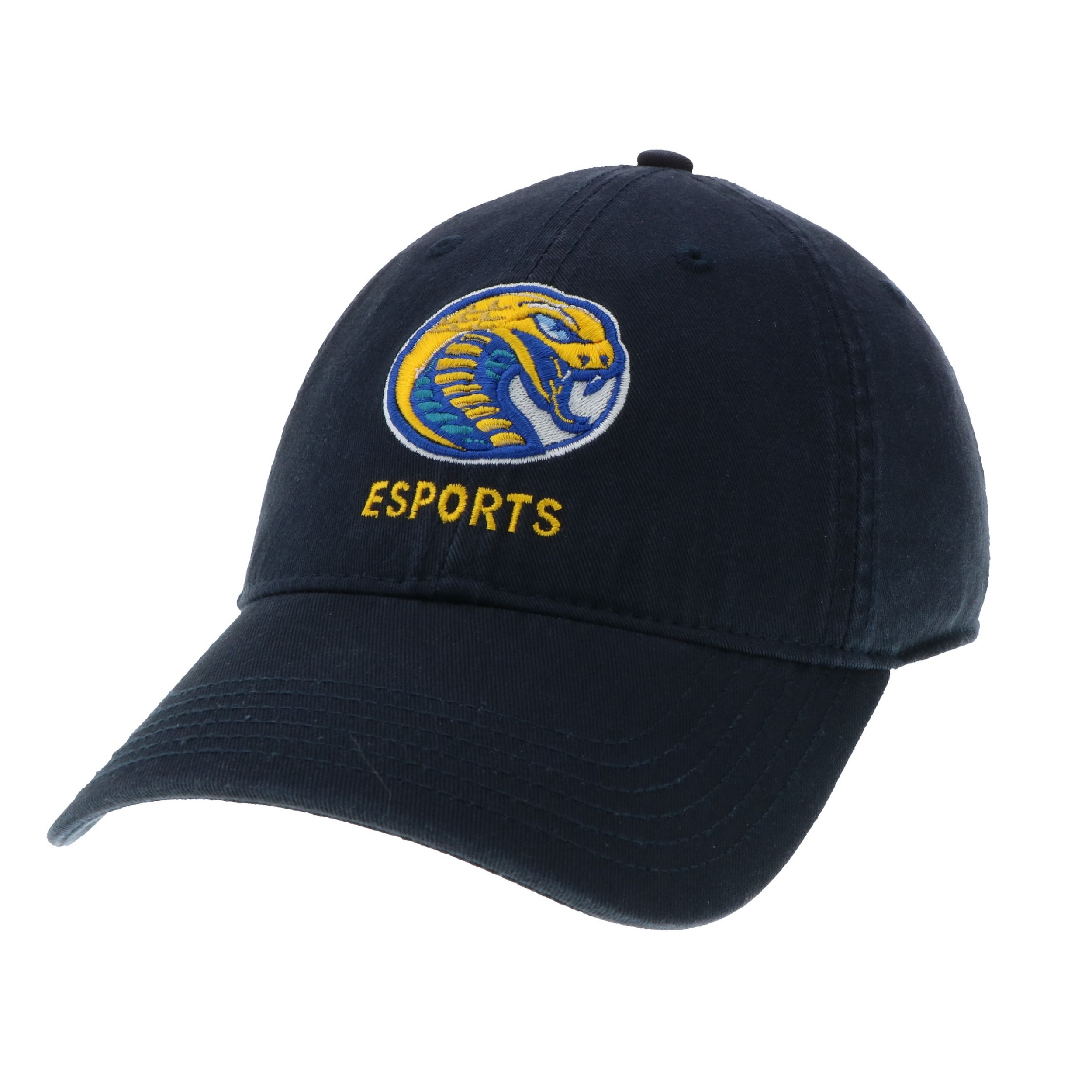 Cover Image For Hat Sport ESPORTS HAT
