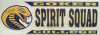 Cover Image for Clearance Decal Sport SPIRIT SQUAD DECAL